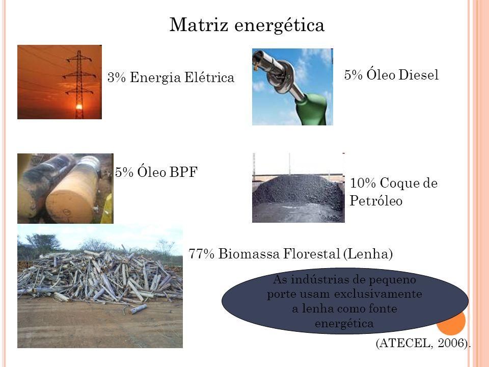 (ATECEL, 2006). Matriz energética 3% Energia Elétrica 5% Óleo Diesel 5% Óleo BPF 10% Coque de Petróleo 77% Biomassa Florestal (Lenha) As indústrias de