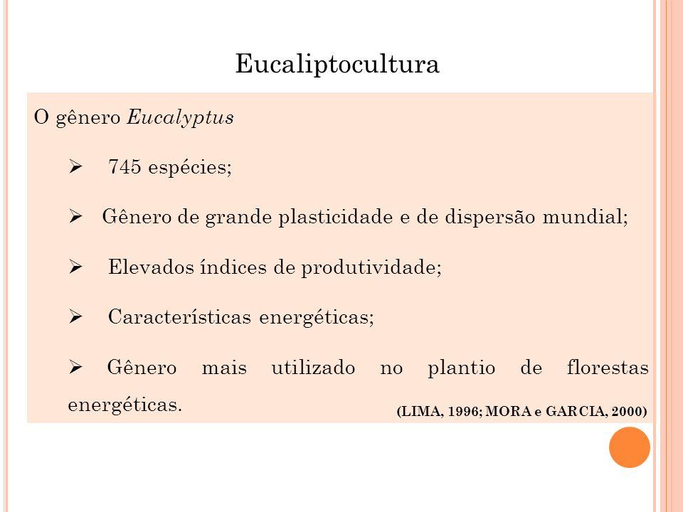 O gênero Eucalyptus 745 espécies; Gênero de grande plasticidade e de dispersão mundial; Elevados índices de produtividade; Características energéticas