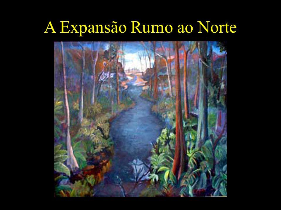 A Expansão Rumo ao Norte