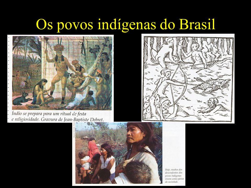 Os povos indígenas do Brasil