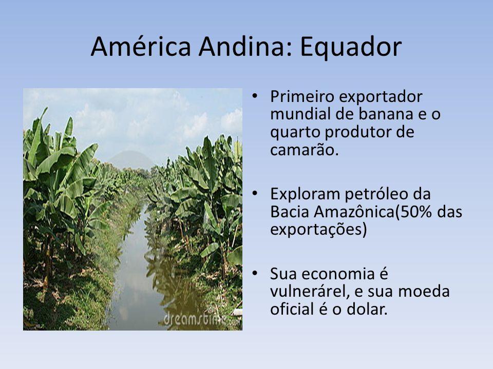 América Andina: Equador Primeiro exportador mundial de banana e o quarto produtor de camarão. Exploram petróleo da Bacia Amazônica(50% das exportações