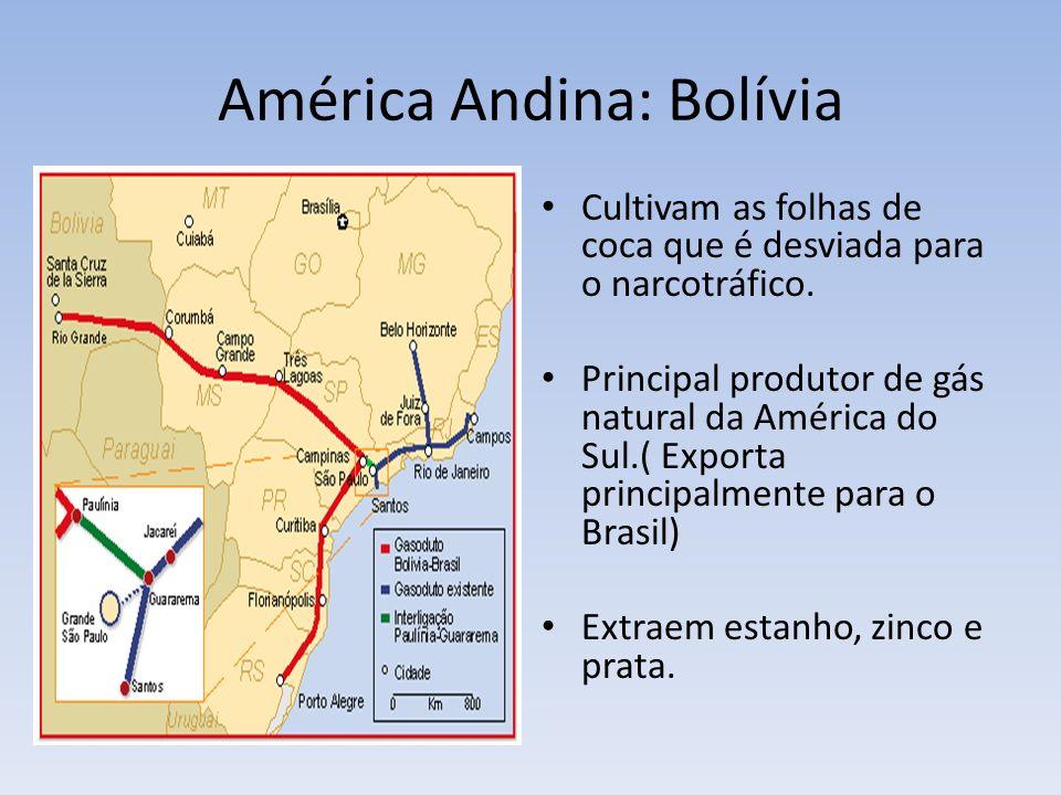 América Andina: Bolívia Cultivam as folhas de coca que é desviada para o narcotráfico. Principal produtor de gás natural da América do Sul.( Exporta p
