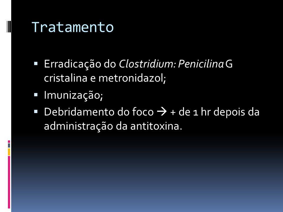 Tratamento Erradicação do Clostridium: Penicilina G cristalina e metronidazol; Imunização; Debridamento do foco + de 1 hr depois da administração da antitoxina.