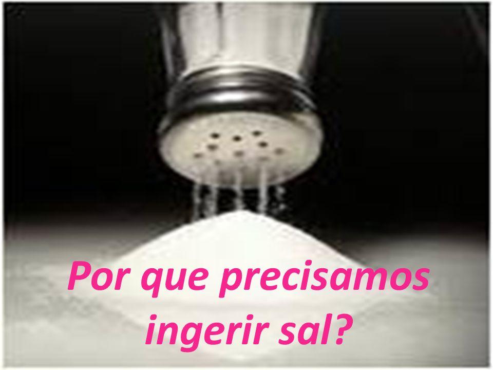 Por que precisamos ingerir sal?