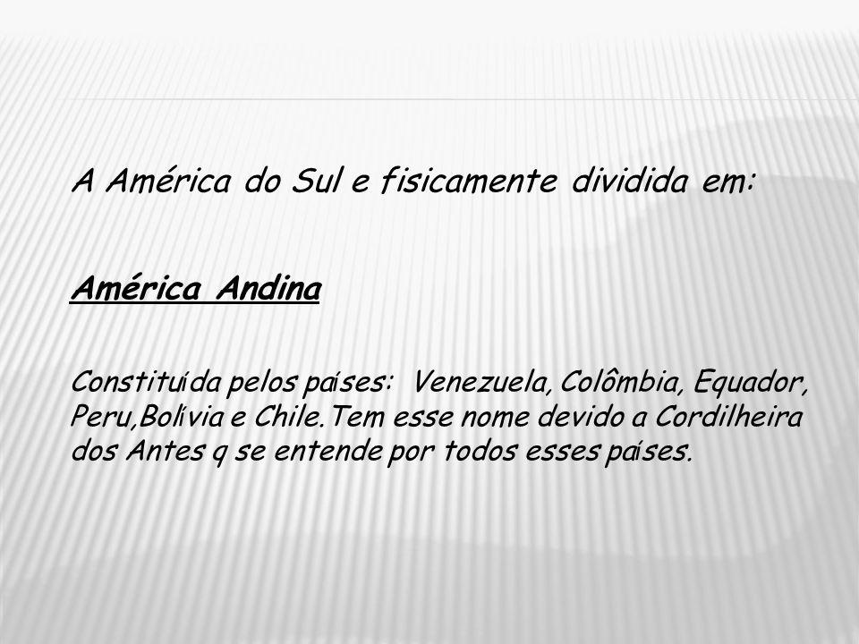 A América do Sul e fisicamente dividida em: América Andina Constitu í da pelos pa í ses: Venezuela, Colômbia, Equador, Peru,Bol í via e Chile.Tem esse