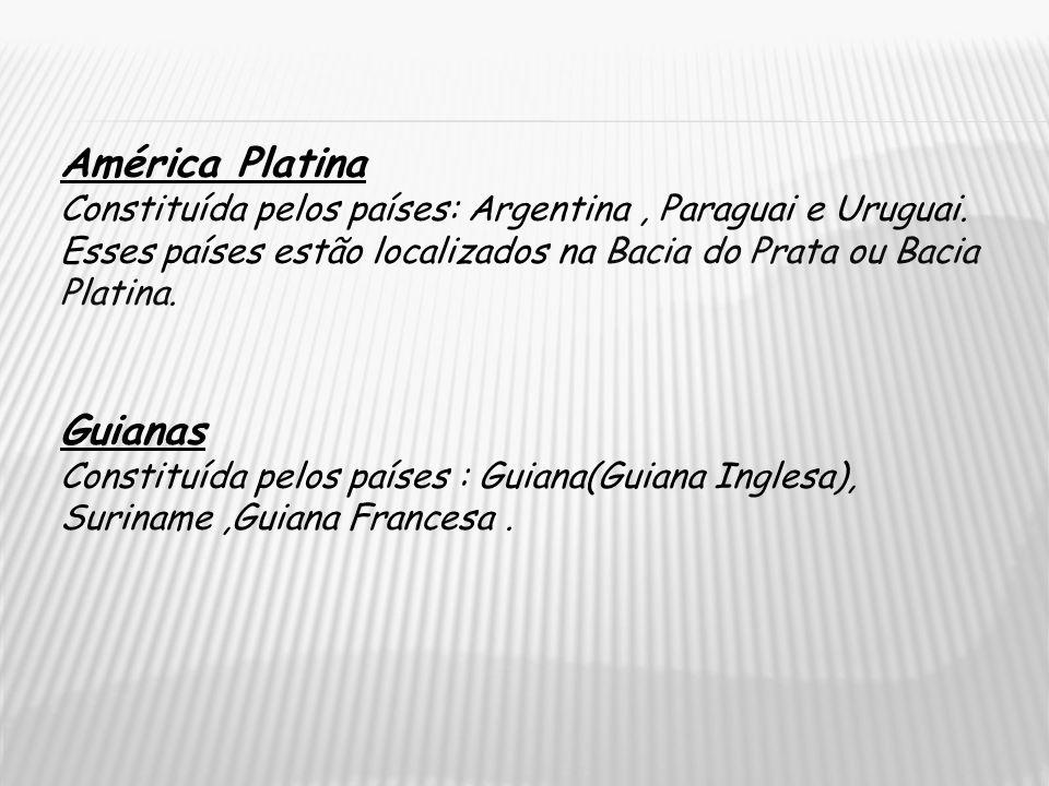 América Platina Constituída pelos países: Argentina, Paraguai e Uruguai. Esses países estão localizados na Bacia do Prata ou Bacia Platina. Guianas Co