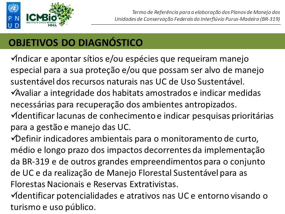 1: Relatório do Diagnóstico Ambiental – Dados Secundários 2: Relatório dos Resultados Preliminares do Diagnóstico Ambiental.