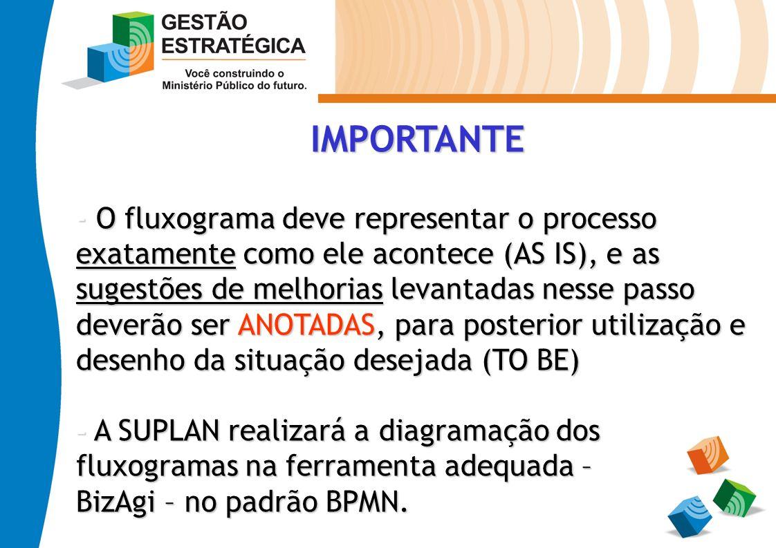 IMPORTANTE - O fluxograma deve representar o processo exatamente como ele acontece (AS IS), e as sugestões de melhorias levantadas nesse passo deverão