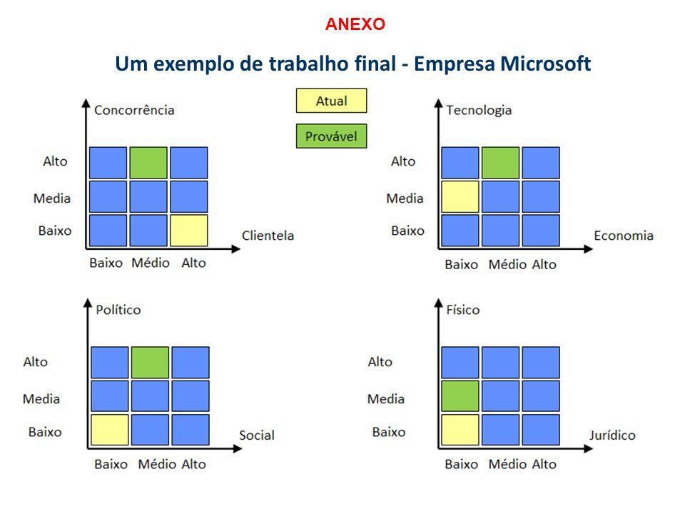 Um exemplo de trabalho final - Empresa Microsoft ANEXO