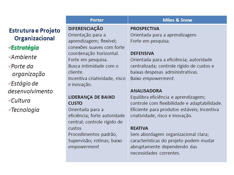 Estratégia da Organização PorterMiles & Snow DIFERENCIAÇÃO Orientação para a aprendizagem; flexível; conexões suaves com forte coordenação horizontal.