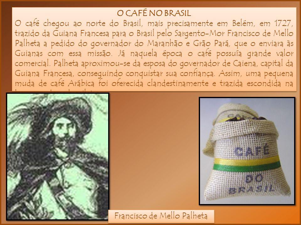 O CAFÉ NO BRASIL O café chegou ao norte do Brasil, mais precisamente em Belém, em 1727, trazido da Guiana Francesa para o Brasil pelo Sargento-Mor Francisco de Mello Palheta a pedido do governador do Maranhão e Grão Pará, que o enviara às Guianas com essa missão.