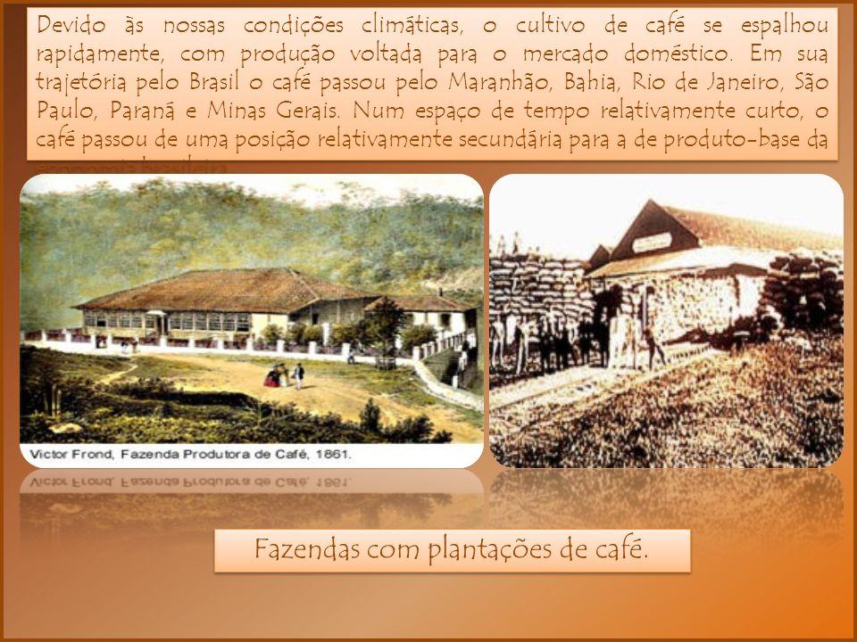 Devido às nossas condições climáticas, o cultivo de café se espalhou rapidamente, com produção voltada para o mercado doméstico.