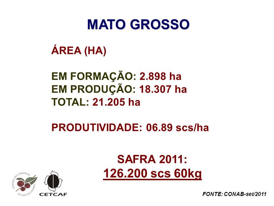 MATO GROSSO ÁREA (HA) EM FORMAÇÃO: 2.898 ha EM PRODUÇÃO: 18.307 ha TOTAL: 21.205 ha PRODUTIVIDADE: 06.89 scs/ha SAFRA 2011: 126.200 scs 60kg FONTE: CONAB-set/2011