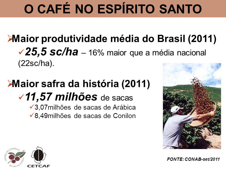O CAFÉ NO ESPÍRITO SANTO Maior produtividade média do Brasil (2011) 25,5 sc/ha – 16% maior que a média nacional (22sc/ha). Maior safra da história (20