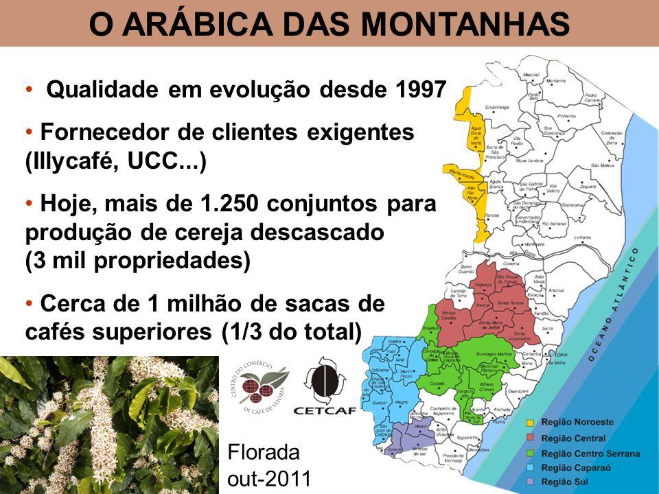 O ARÁBICA DAS MONTANHAS Qualidade em evolução desde 1997 Fornecedor de clientes exigentes (Illycafé, UCC...) Hoje, mais de 1.250 conjuntos para produção de cereja descascado (3 mil propriedades) Cerca de 1 milhão de sacas de cafés superiores (1/3 do total) Florada out-2011