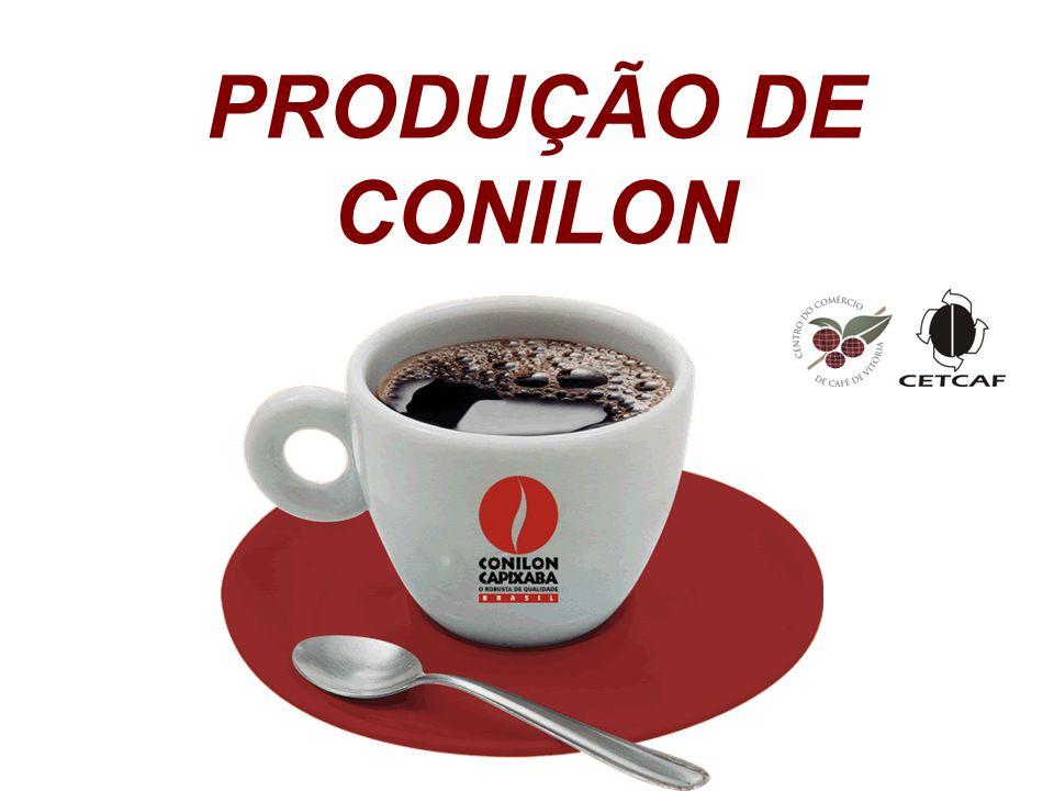 PRODUÇÃO DE CONILON