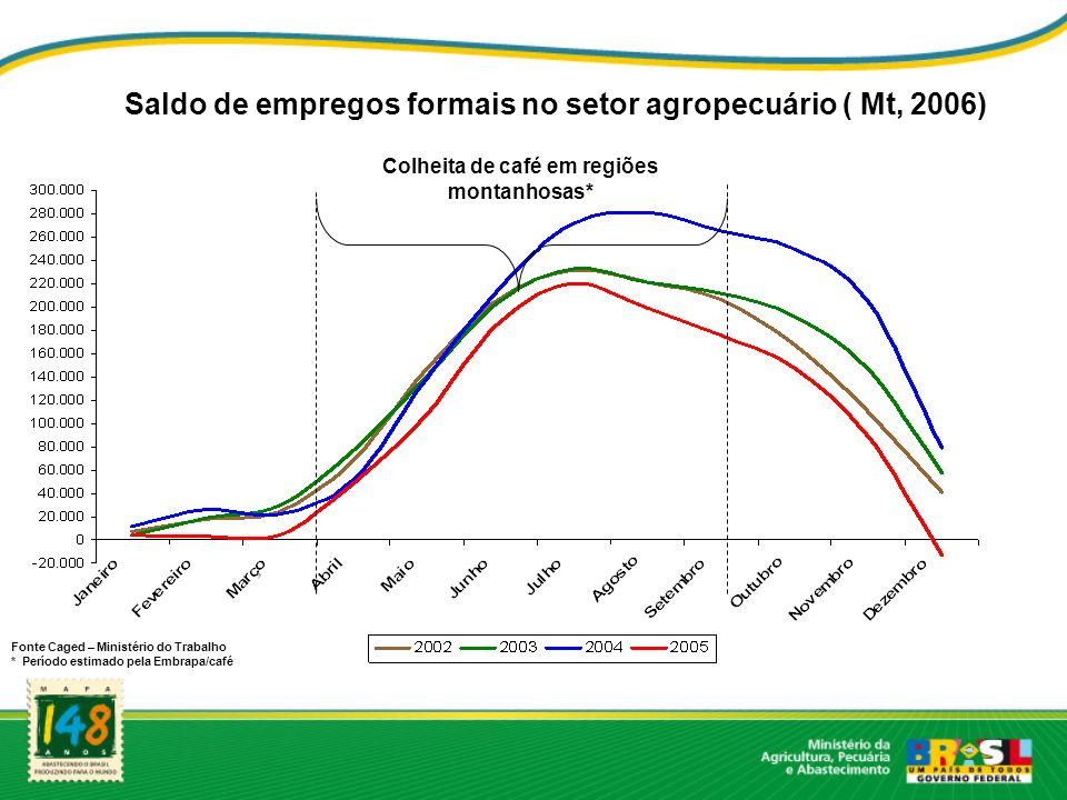 Fonte Caged – Ministério do Trabalho * Período estimado pela Embrapa/café Saldo de empregos formais no setor agropecuário ( Mt, 2006) Colheita de café