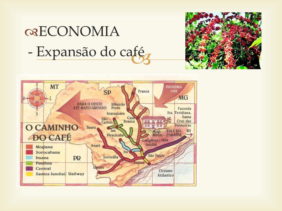 OESTE PAULISTA - Terra roxa - Cafeicultor – Empresário - Técnicas mais modernas - Estrutura própria para comercialização - Vida urbana - Novos tipos de relação de produção