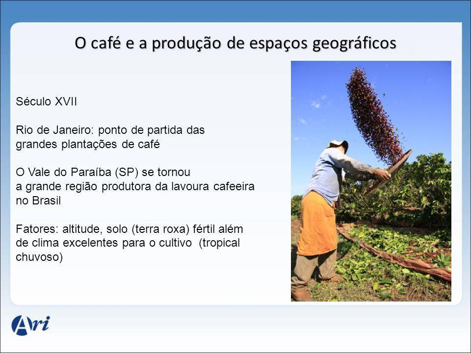 Século XVII Rio de Janeiro: ponto de partida das grandes plantações de café O Vale do Paraíba (SP) se tornou a grande região produtora da lavoura cafe