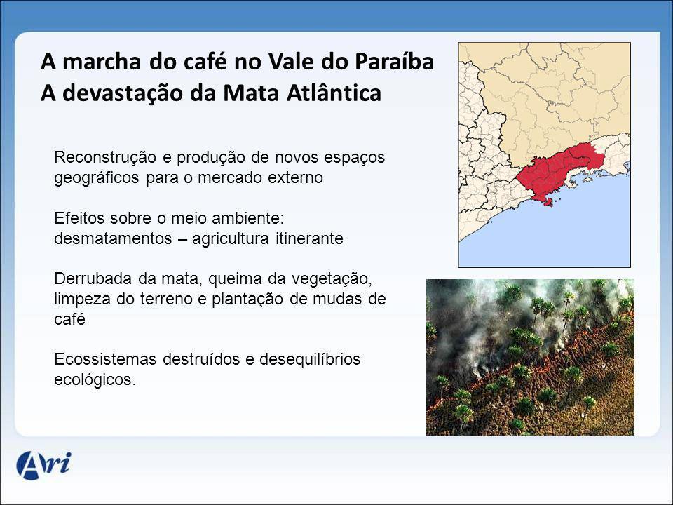 A marcha do café no Vale do Paraíba A devastação da Mata Atlântica Reconstrução e produção de novos espaços geográficos para o mercado externo Efeitos