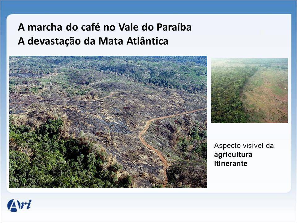 A marcha do café no Vale do Paraíba A devastação da Mata Atlântica Aspecto visível da agricultura itinerante
