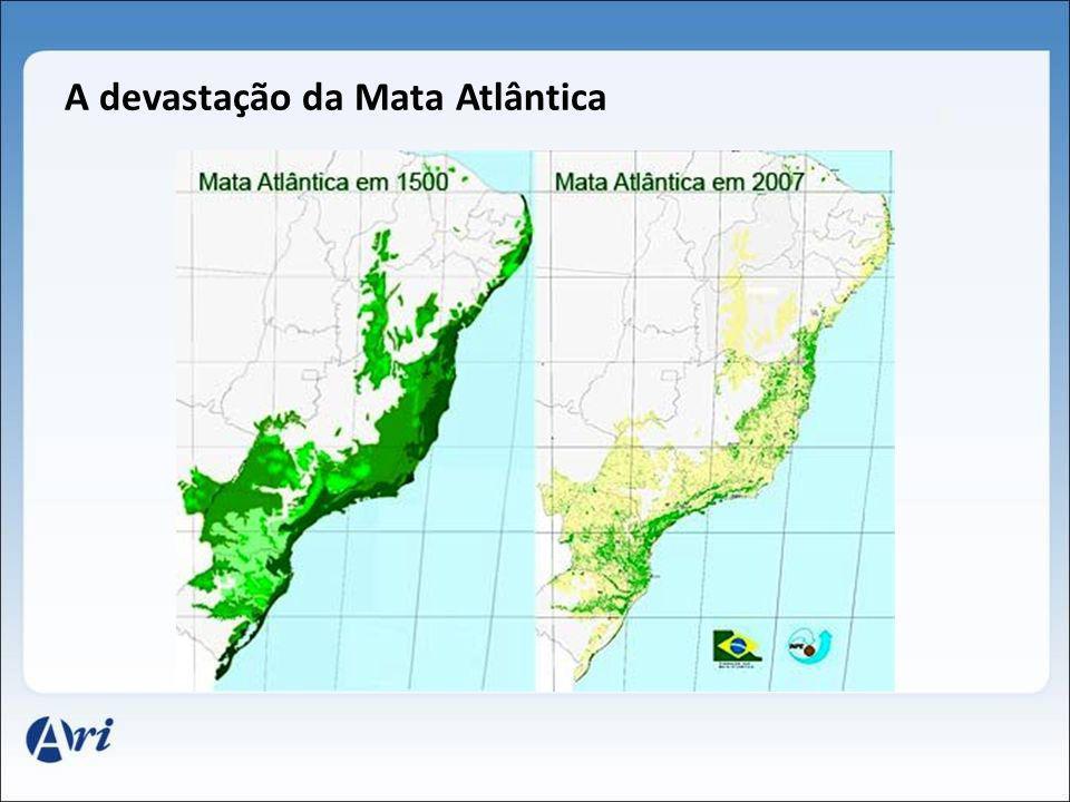 A devastação da Mata Atlântica