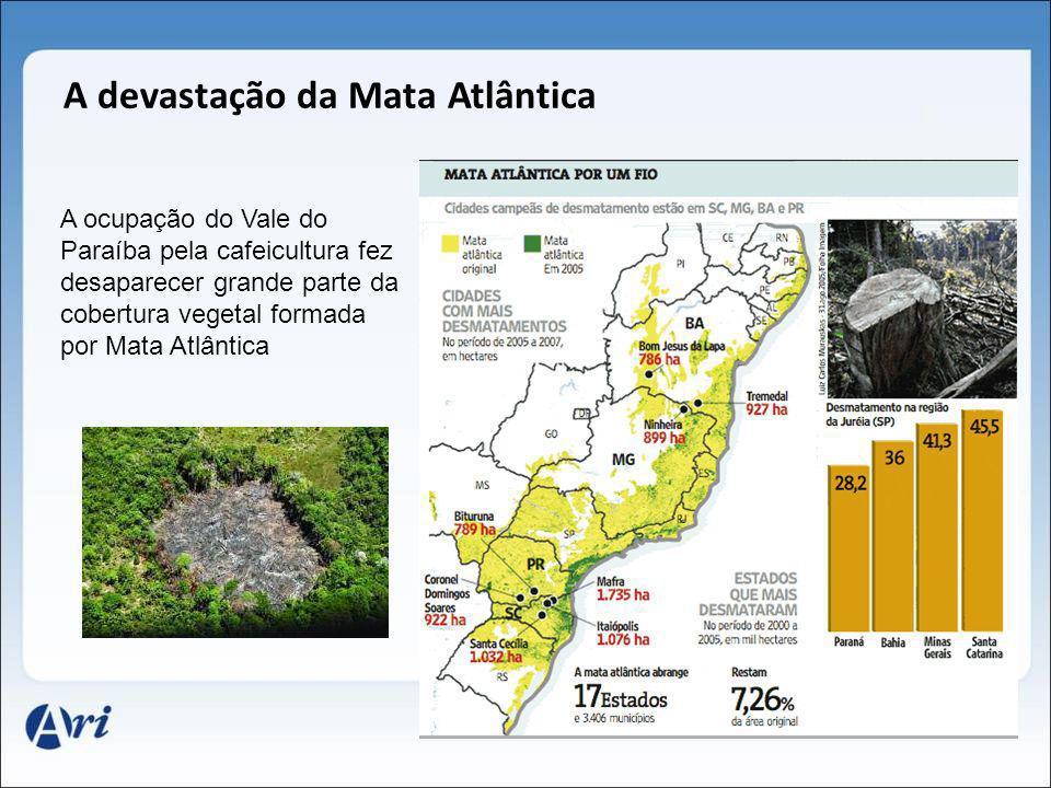 A ocupação do Vale do Paraíba pela cafeicultura fez desaparecer grande parte da cobertura vegetal formada por Mata Atlântica