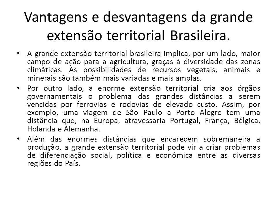 Vantagem de ordem natural: Possibilidades de recursos vegetais FLORESTA AMAZÔNICA