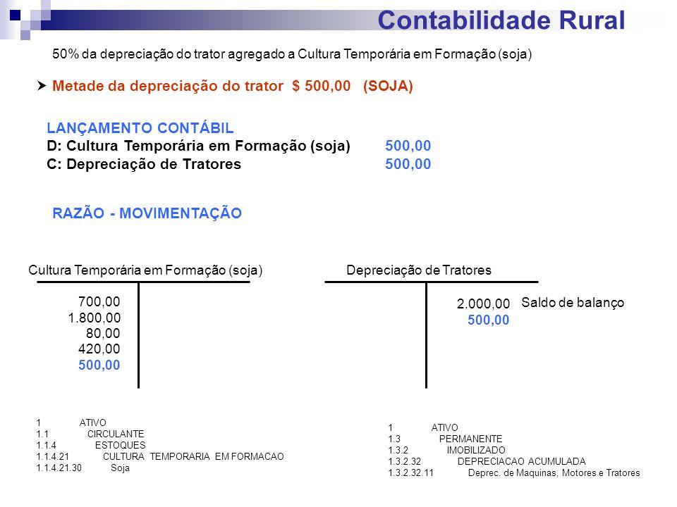 Contabilidade Rural Metade da depreciação do trator $ 500,00 (SOJA) LANÇAMENTO CONTÁBIL D: Cultura Temporária em Formação (soja)500,00 C: Depreciação