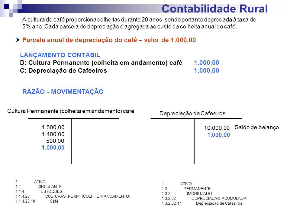 Contabilidade Rural Parcela anual de depreciação do café – valor de 1.000,00 LANÇAMENTO CONTÁBIL D: Cultura Permanente (colheita em andamento) café1.0
