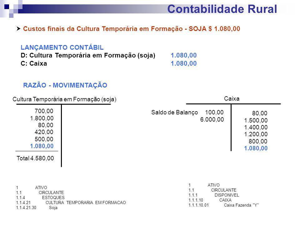 Contabilidade Rural Custos finais da Cultura Temporária em Formação - SOJA $ 1.080,00 LANÇAMENTO CONTÁBIL D: Cultura Temporária em Formação (soja)1.08