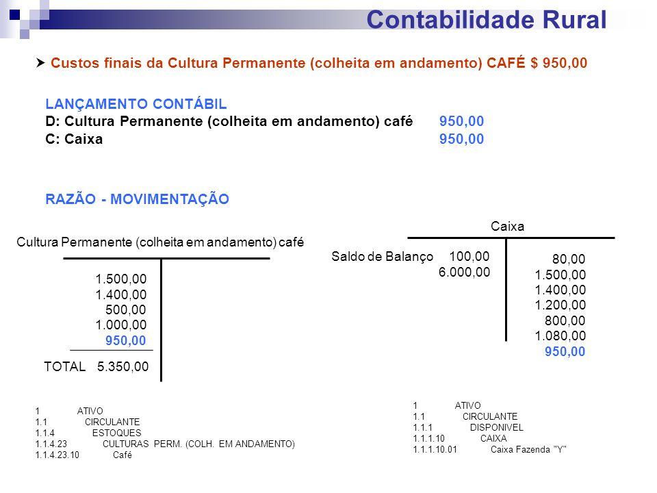 Contabilidade Rural Custos finais da Cultura Permanente (colheita em andamento) CAFÉ $ 950,00 LANÇAMENTO CONTÁBIL D: Cultura Permanente (colheita em a