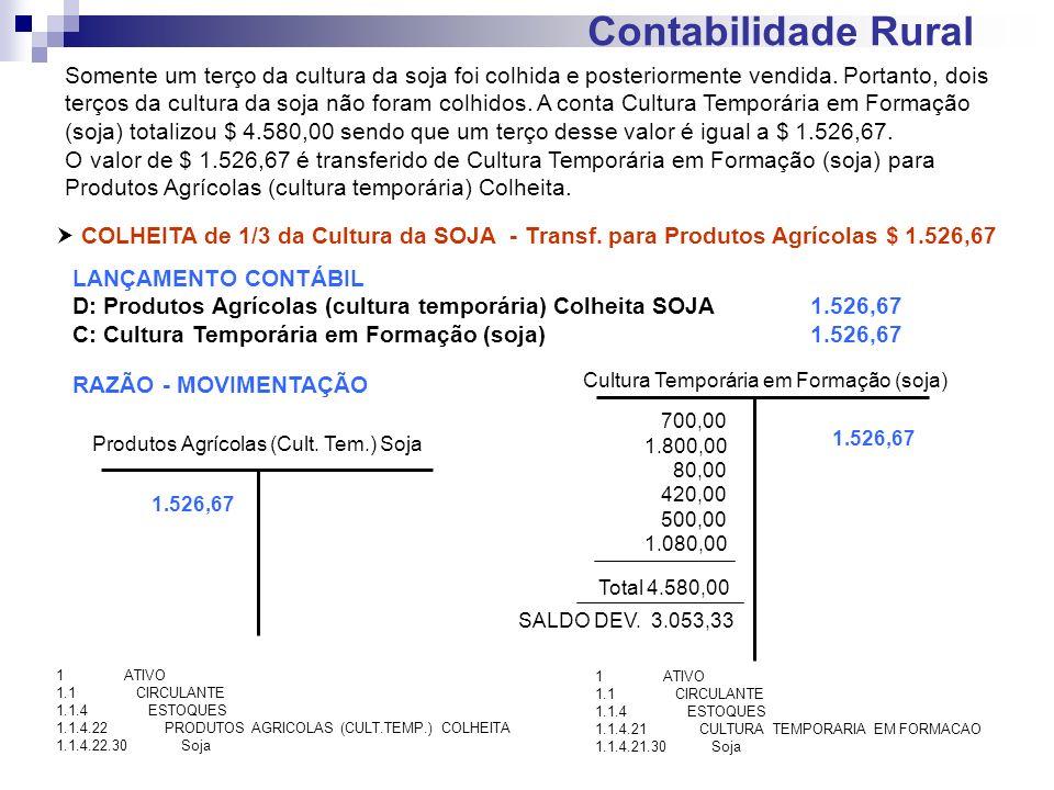 Contabilidade Rural COLHEITA de 1/3 da Cultura da SOJA - Transf. para Produtos Agrícolas $ 1.526,67 LANÇAMENTO CONTÁBIL D: Produtos Agrícolas (cultura