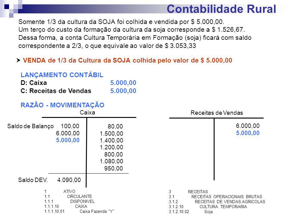 Contabilidade Rural VENDA de 1/3 da Cultura da SOJA colhida pelo valor de $ 5.000,00 LANÇAMENTO CONTÁBIL D: Caixa5.000,00 C: Receitas de Vendas5.000,0