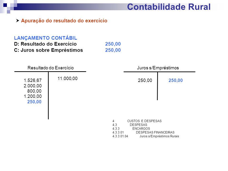 Contabilidade Rural Apuração do resultado do exercício LANÇAMENTO CONTÁBIL D: Resultado do Exercício250,00 C: Juros sobre Empréstimos250,00 Resultado