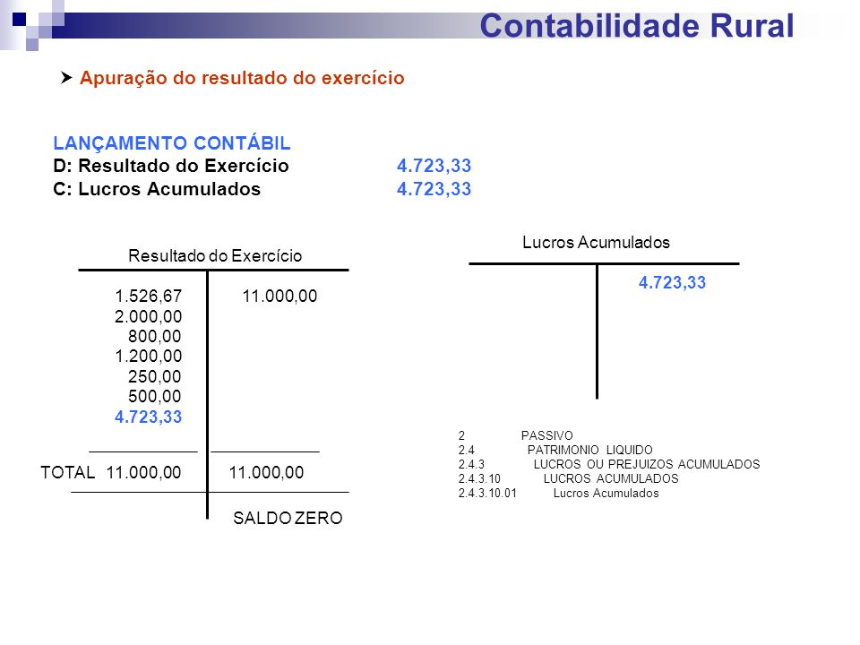 Contabilidade Rural Apuração do resultado do exercício LANÇAMENTO CONTÁBIL D: Resultado do Exercício4.723,33 C: Lucros Acumulados4.723,33 Resultado do