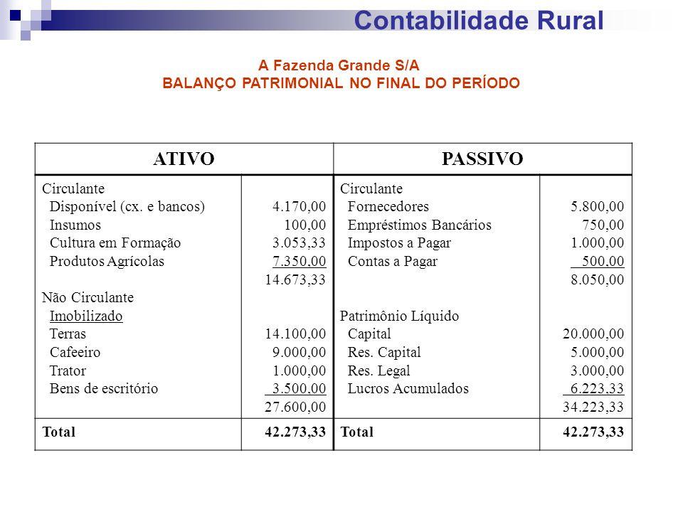 Contabilidade Rural ATIVOPASSIVO Circulante Disponível (cx. e bancos) Insumos Cultura em Formação Produtos Agrícolas Não Circulante Imobilizado Terras
