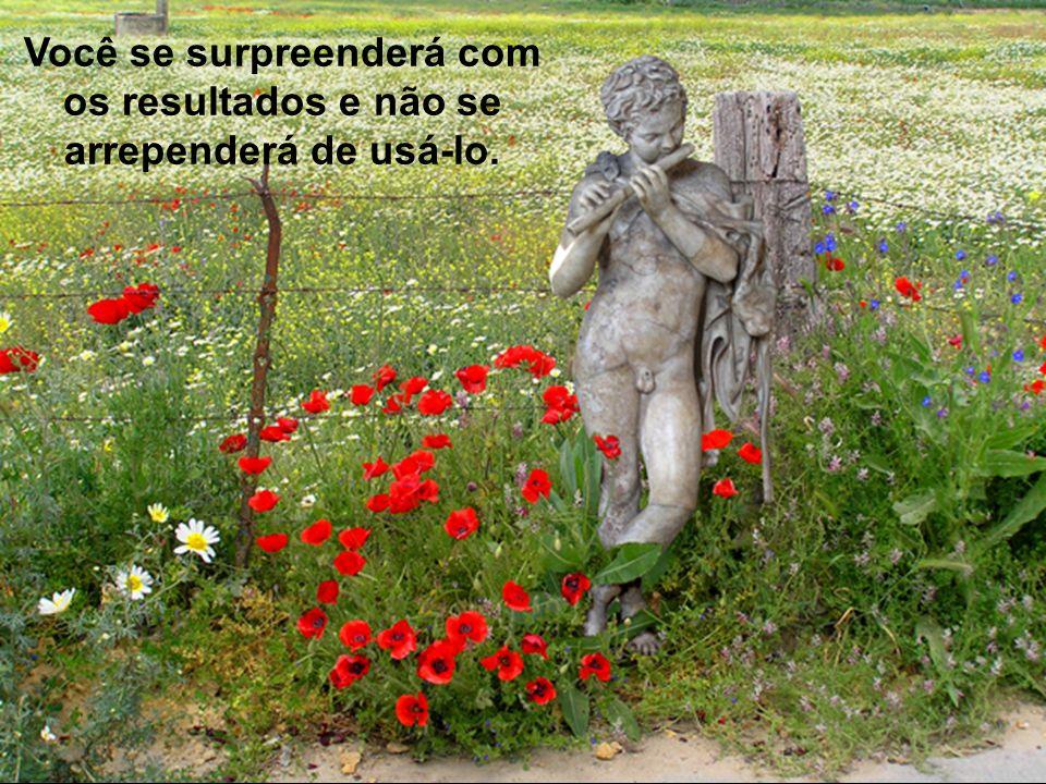Prado Slides – Cidreira / RS Agora que você já conhece o Princípio 90/10, utilize-o..