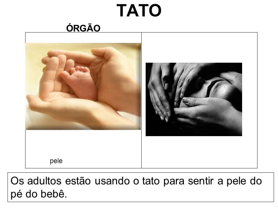 TATO ÓRGÃO Os adultos estão usando o tato para sentir a pele do pé do bebê. pele