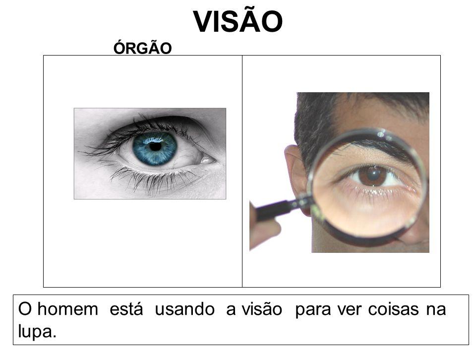 VISÃO ÓRGÃO O homem está usando a visão para ver coisas na lupa.