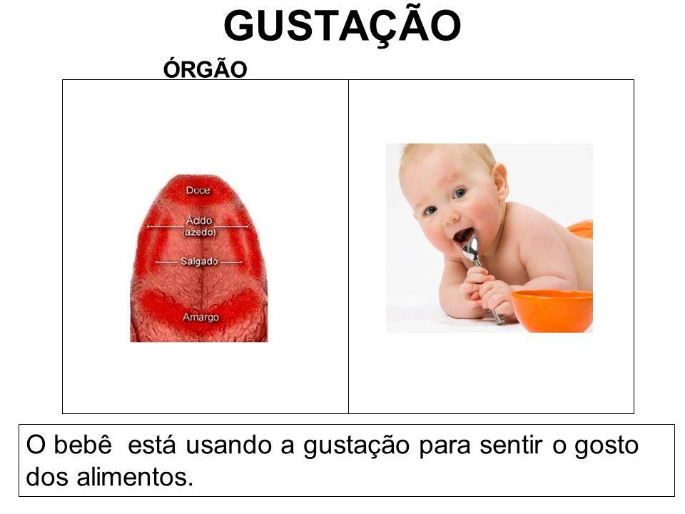 GUSTAÇÃO ÓRGÃO O bebê está usando a gustação para sentir o gosto dos alimentos.
