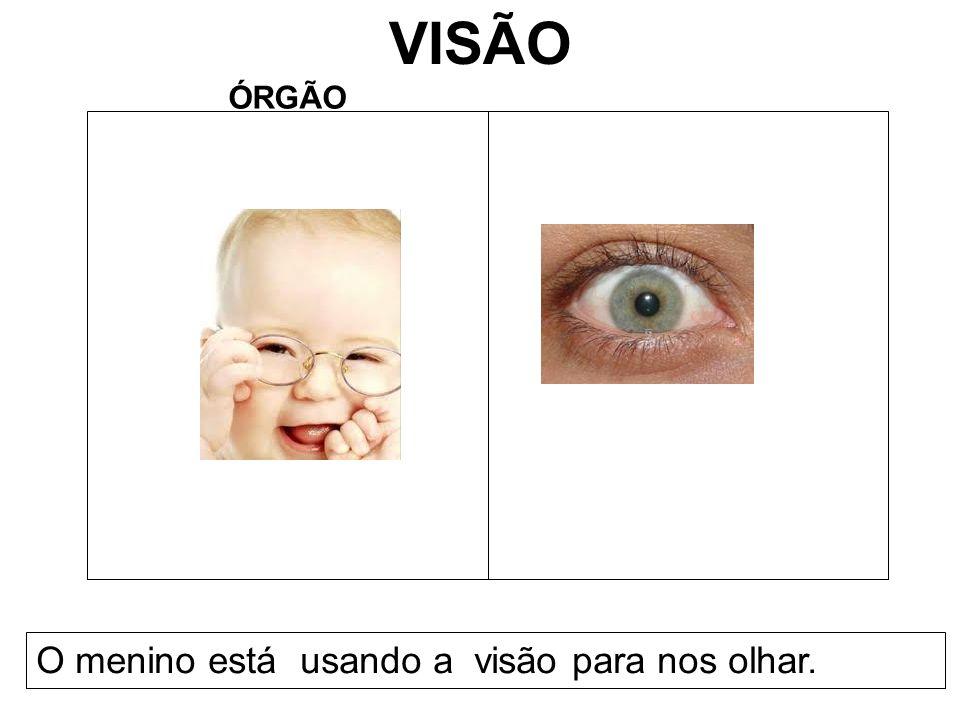 VISÃO ÓRGÃO O menino está usando a visão para nos olhar.