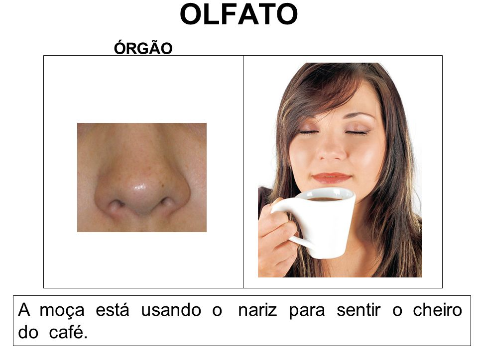 OLFATO ÓRGÃO A moça está usando o nariz para sentir o cheiro do café.