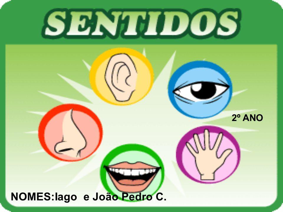 2º ANO NOMES:Iago e João Pedro C.