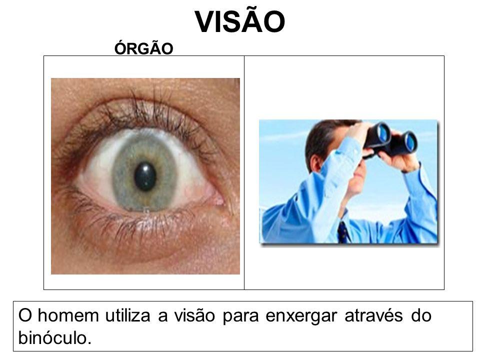 VISÃO ÓRGÃO O homem utiliza a visão para enxergar através do binóculo.