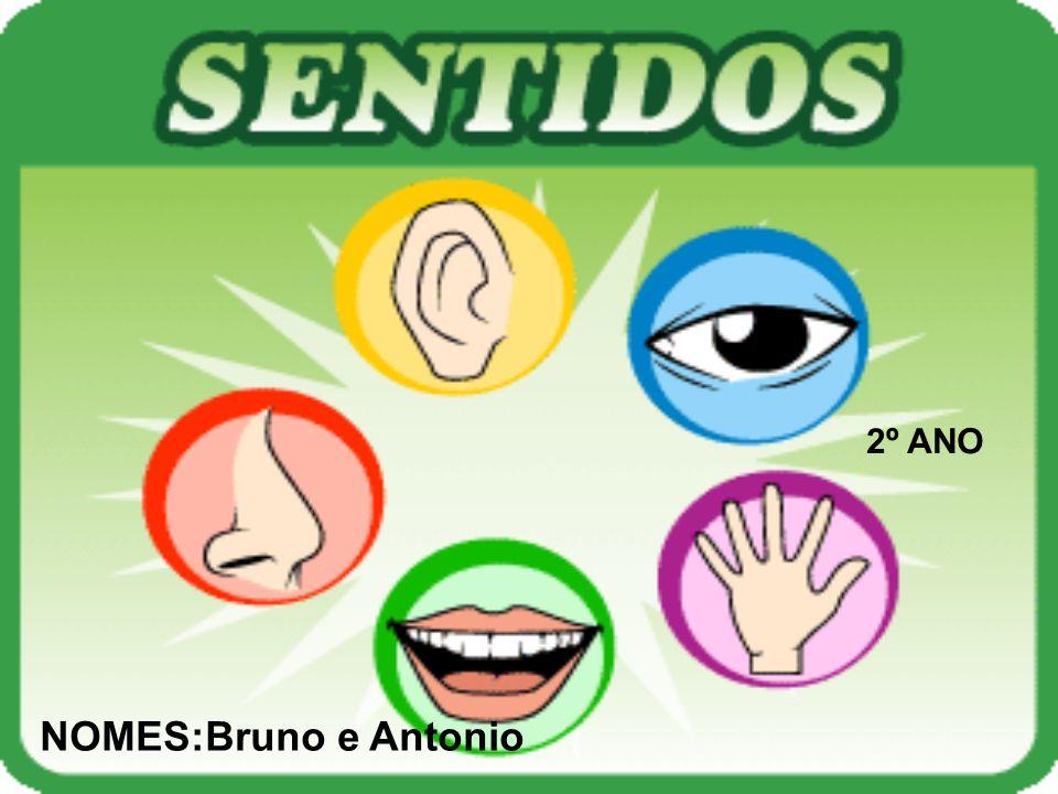 2º ANO NOMES:Bruno e Antonio
