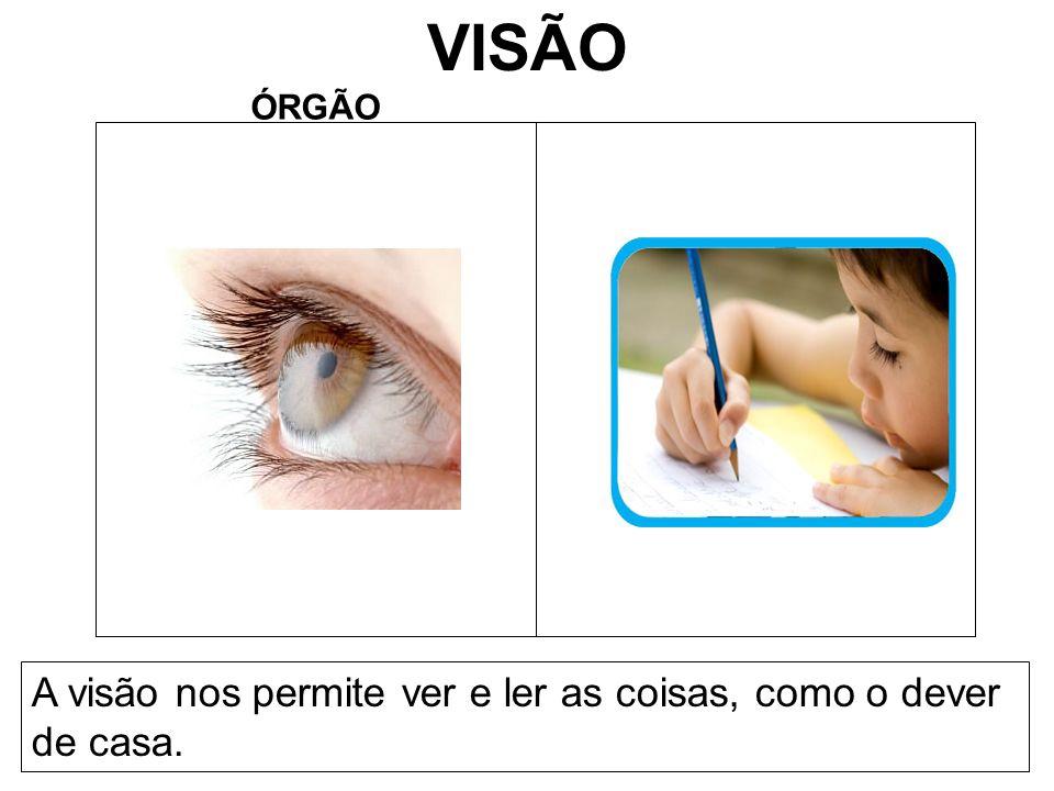 VISÃO ÓRGÃO A visão nos permite ver e ler as coisas, como o dever de casa.