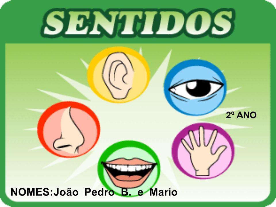 2º ANO NOMES:João Pedro B. e Mario