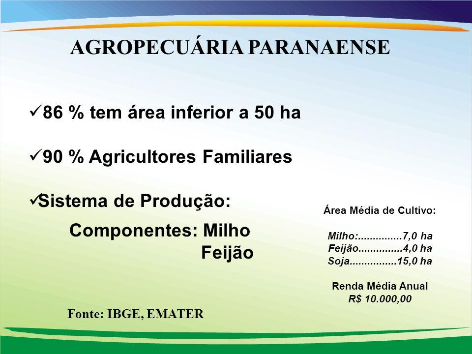 86 % tem área inferior a 50 ha 90 % Agricultores Familiares Sistema de Produção: Componentes: Milho Feijão Área Média de Cultivo: Milho:...............7,0 ha Feijão...............4,0 ha Soja................15,0 ha Renda Média Anual R$ 10.000,00 AGROPECUÁRIA PARANAENSE Fonte: IBGE, EMATER