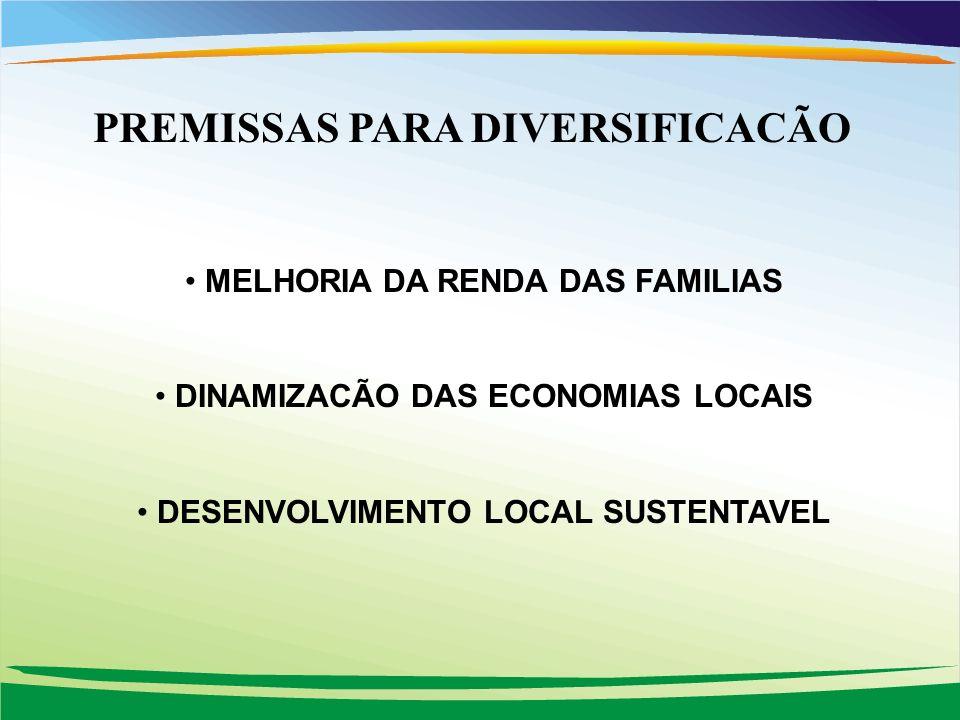 PREMISSAS PARA DIVERSIFICACÃO MELHORIA DA RENDA DAS FAMILIAS DINAMIZACÃO DAS ECONOMIAS LOCAIS DESENVOLVIMENTO LOCAL SUSTENTAVEL